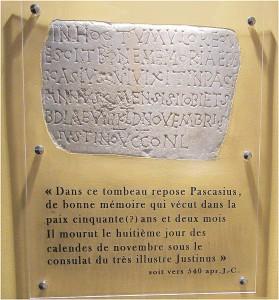 02-pierre de Pascasius protégée