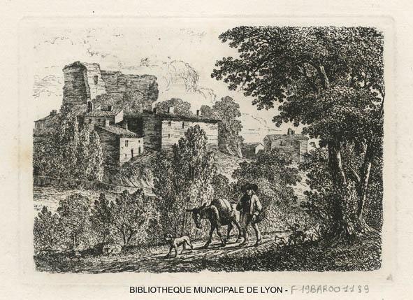 Vieux château-BML-Baron pf